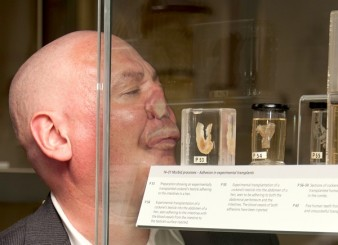 photo of performance artist rubbing his nose up against a glass case filled with exhibits