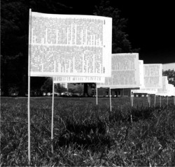 black and white photo of a paper flag in a field