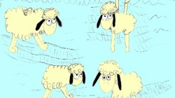 animation of four yellow sheep against a turqoise background Oska Bright