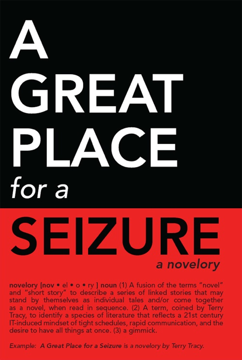 Image - A_Great_Place_for_a_Seizure_Cover.jpg